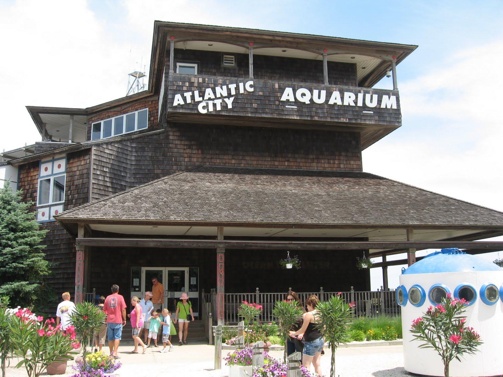 The Querrey 39 S Quest 6 23 2010 Atlantic City