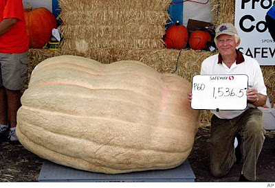 Farmer carves record with huge pumpkin