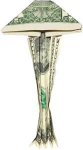 Jelyfish money sculptures created by dollar
