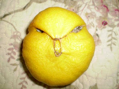 Weirdest Lemon Ever Found on Earth