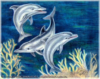 Love of Dolphins Pictures