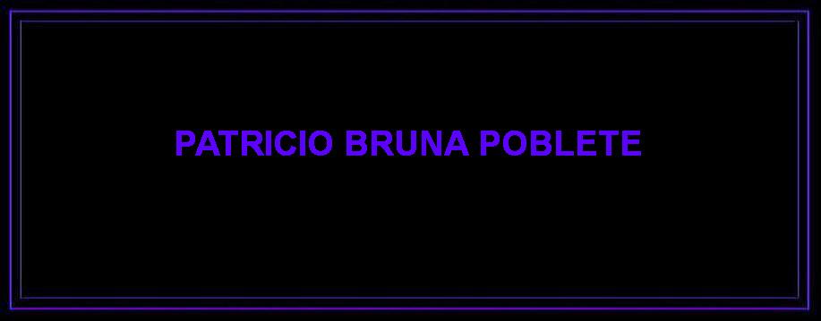 Patricio Bruna Poblete