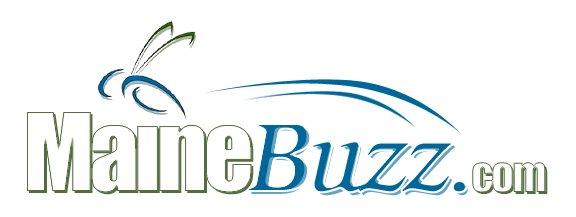 Maine Buzz