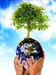 Cuida el planeta es de todos!!!