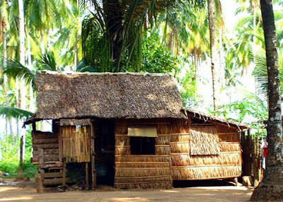nipa house philippines this house typical of the philippine