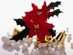 Premio Navidad