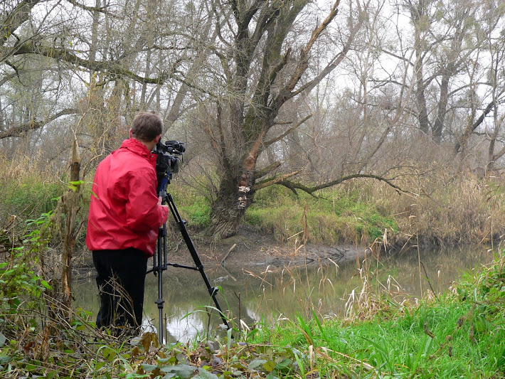 camera man shooting tinders on an old tree across the river