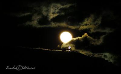 Notte Illuminata