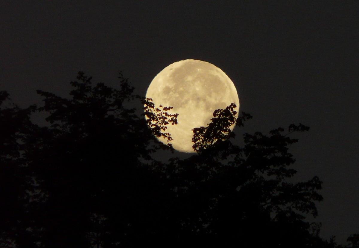 Couper les cheveux avec la lune affordable lorsque les pointes sont sches lorsque luon voit que - Lune montante et descendante ...