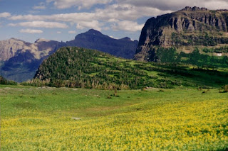 photo of Logan Pass, MT