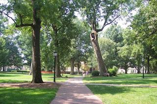 photo of Chapel Hill, NC