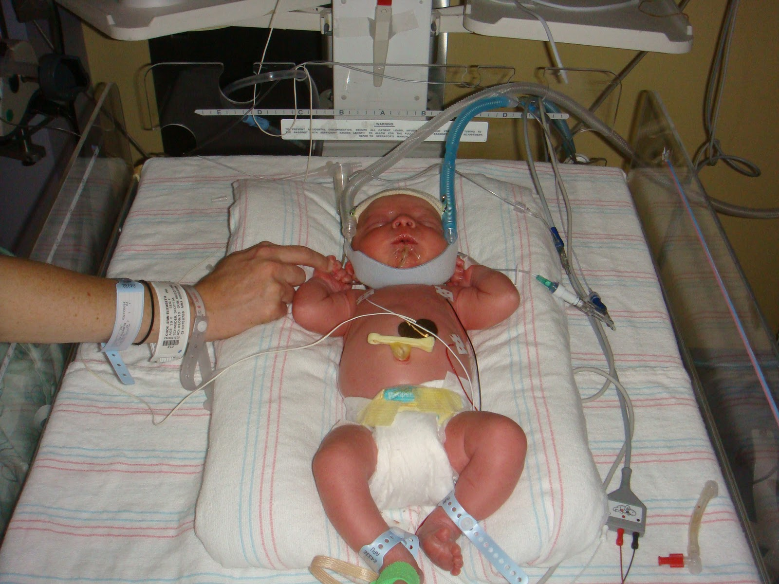 National Preemie Awareness Day