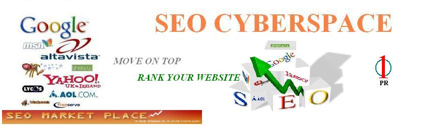 SEO CYBERSPACE
