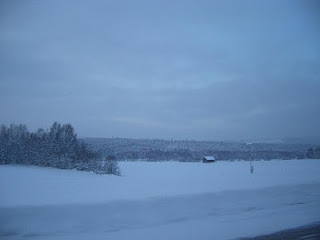 Typical Lappland landscape