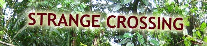 Strange Crossing