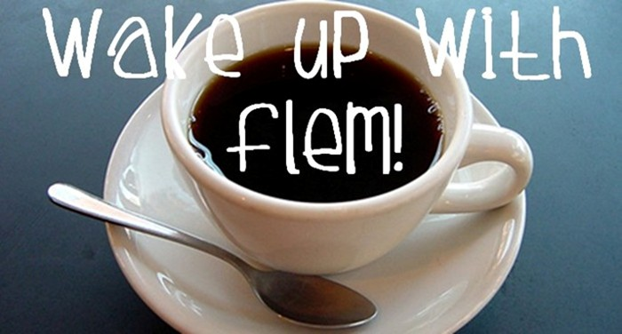 Wake Up With Flem!