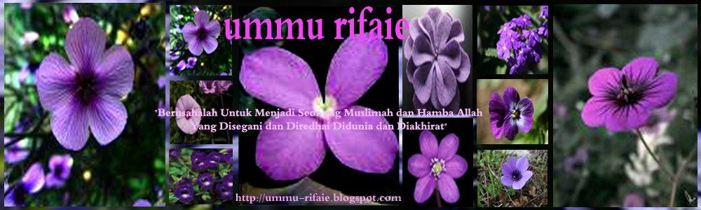 Ummu Rifaie (Mujahidah Solehah)