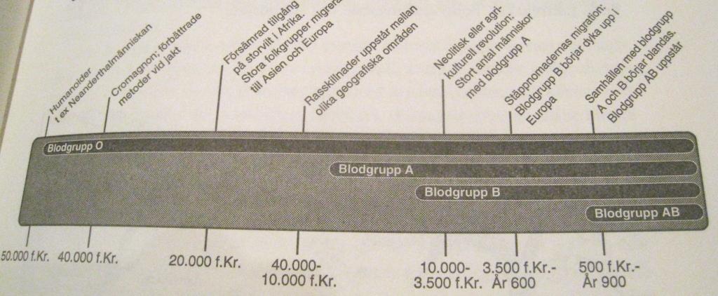blodgrupp mat lista