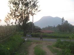 Andong