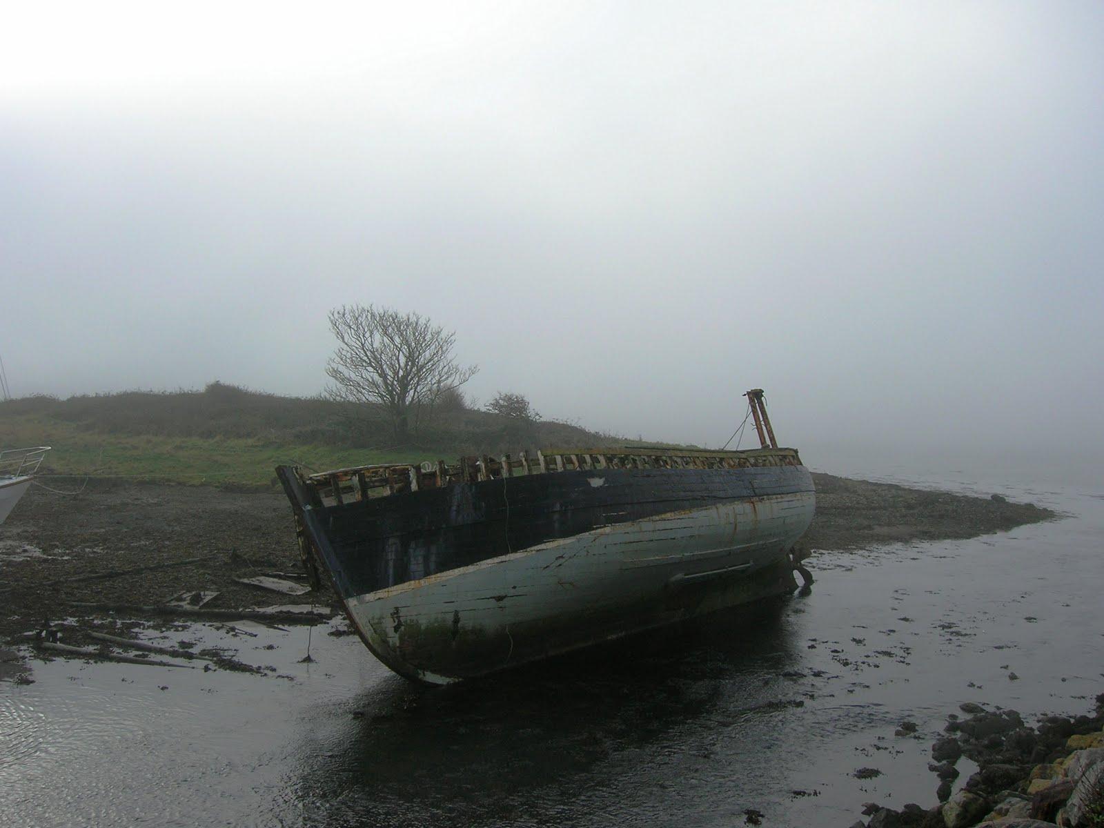 Image result for foggy coast ireland