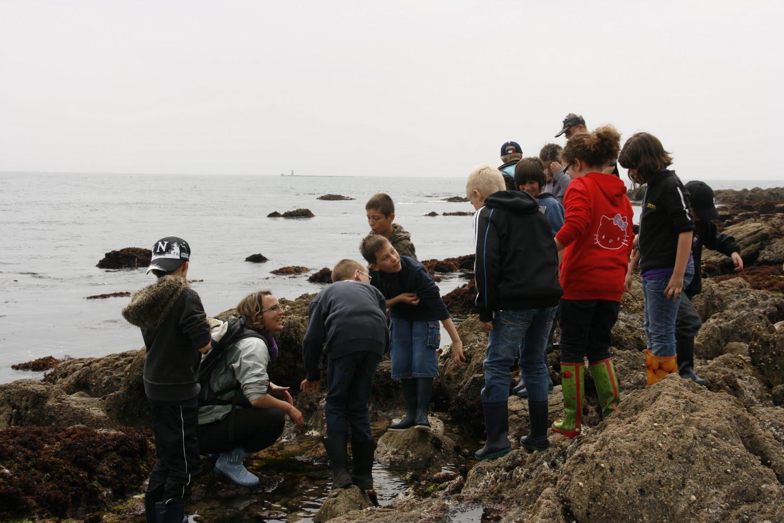 La pêche sur loeil inférieur novgorod vidéo