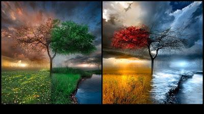 Desktop Wallpaper, Gallery, 3D-Art, Seasons Change