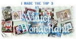 Sept. 2010 - I came in the Top 3 at Winter Wonderland!!! :)
