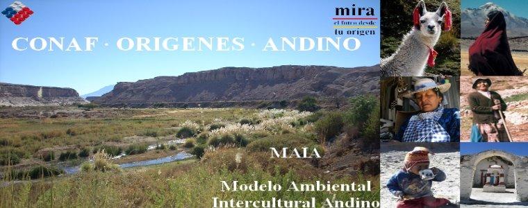 CONAF/ORIGENES ANDINO