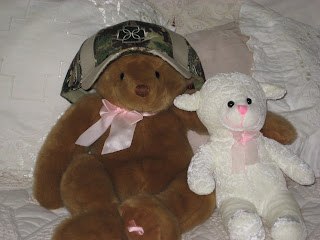 teddy bear wearing baseball hat with the DD logo stitched on it