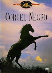 Baixar Filme O Corcel Negro (Dublado)