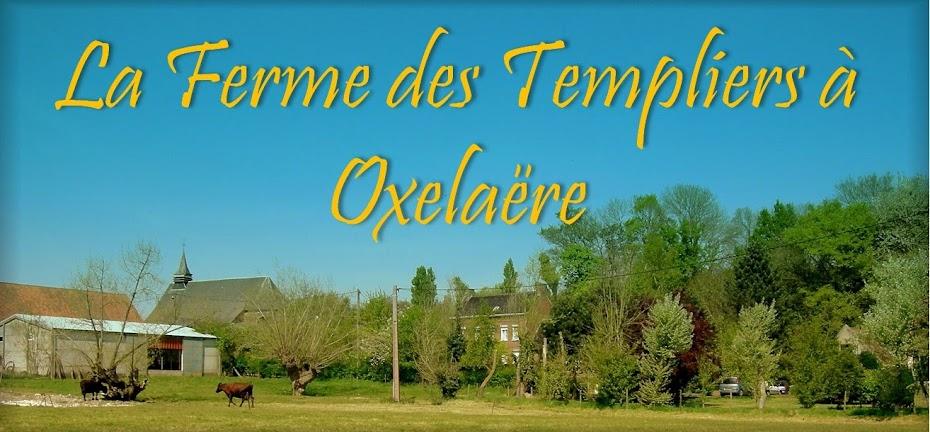 La Ferme des Templiers à Oxelaëre