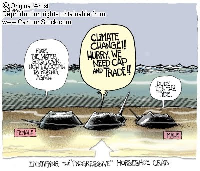 global warming controversy in political perspective Sample essay: climate change two perspectives the fact that human activities contribute to the content of greenhouse gases in the atmosphere forms the crux of the global warming debate anthropogenic perspective humans, being part of the biosphere.