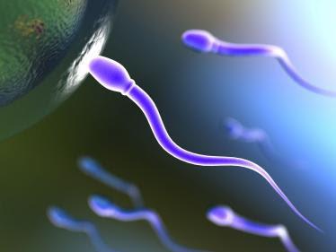 Healthy sperm for pregnancy