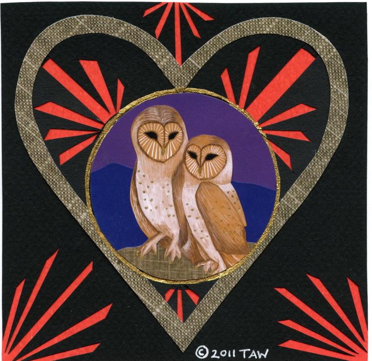 Owls In Love. Barn Owls in Love