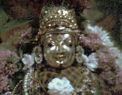 Maa shakambari - Shakambari puram, Chennai