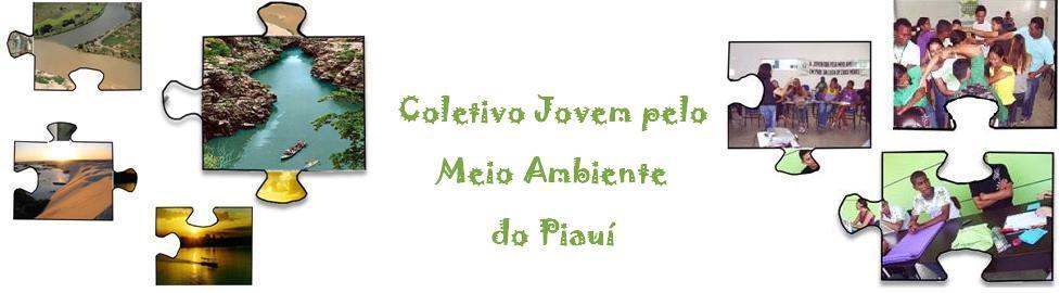 Coletivo Jovem pelo Meio Ambiente do Piauí