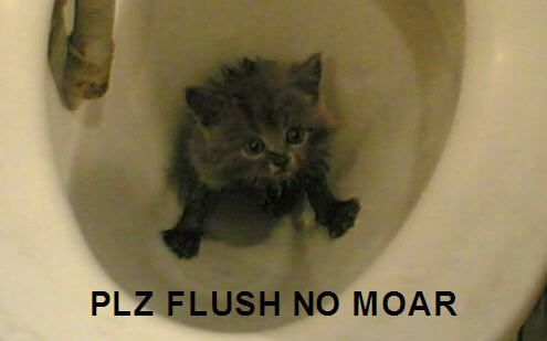 PLZ FLUSH NO MOAR
