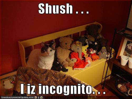 SHUSH I iz incognito