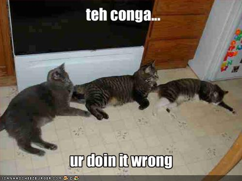 teh conga ur doin it wrong