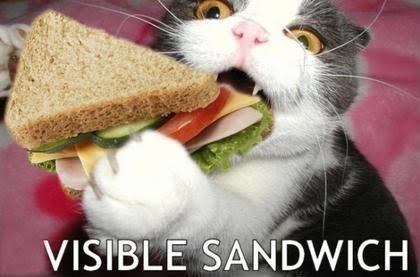 VISIBLE SANDWICH