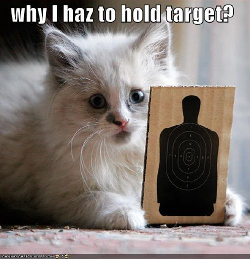 why I haz to hold target