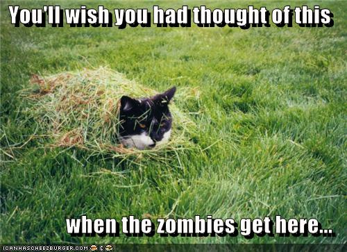 wish thought zombies