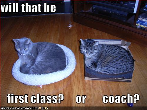will that be first class or coach