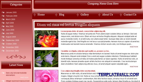 Flowered Red CSS Website Template