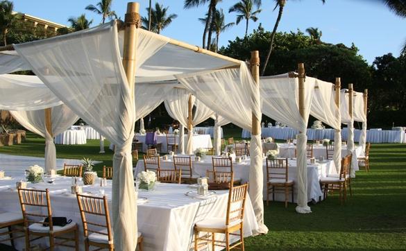 Fancy Backyard Wedding : Picnic Weddings Photos of Fancy Outdoor Weddings