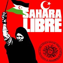 Todos con el Sahara
