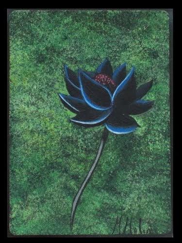 black lotus by marta molina. Black Bedroom Furniture Sets. Home Design Ideas