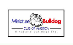 The Miniature Bulldog Club of America