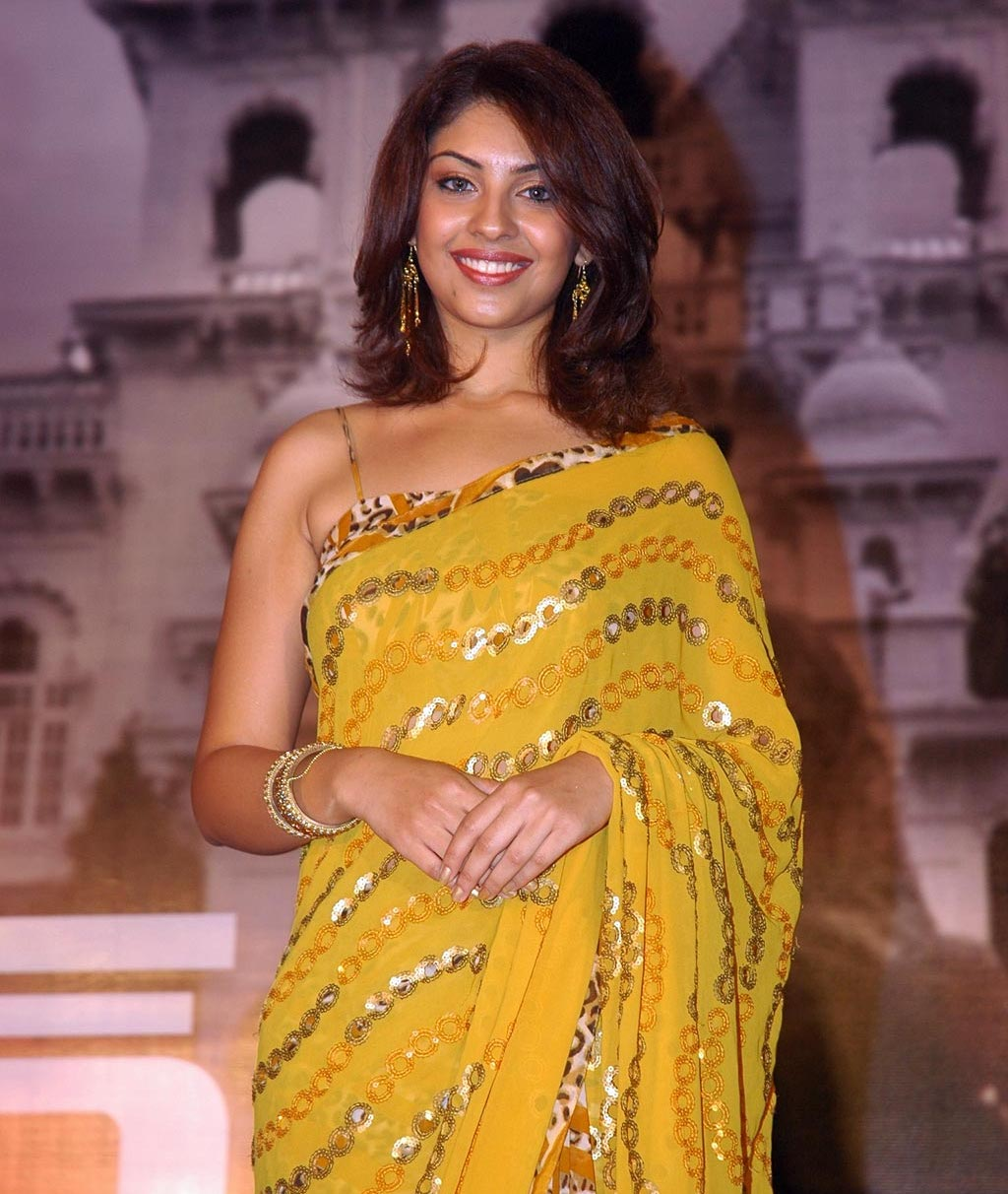 <br />wallpapers of richa gangopadhya in saree