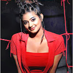 Priyamani says reducing dress is not vulgar